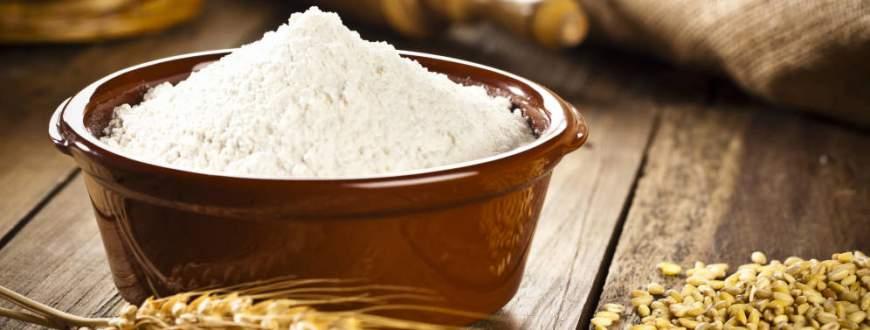Este año serían record las exportaciones harina